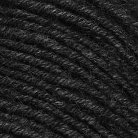 Пряжа Seam Prisma - 21 черный седой, Цвет: 21 черный седой